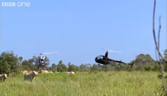 Helikopterkauboid