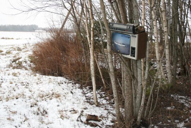 Metsa TV