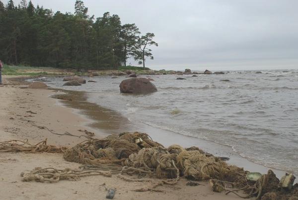 võrgupusa rannal